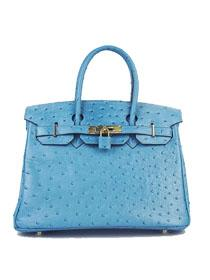 Hermes Birkin 30cm Ostrich vein Handbags blue golden 6088