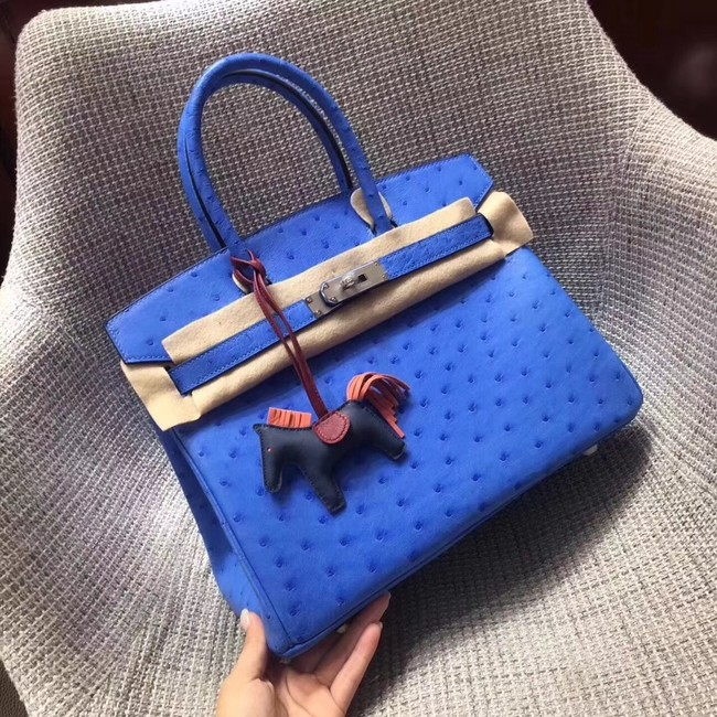 Hermes Real ostrich leather birkin bag BK35 blue