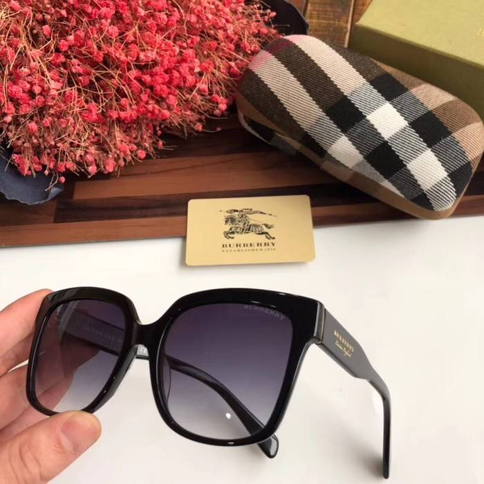 BurBerry Sunglasses Top Quality BB41022