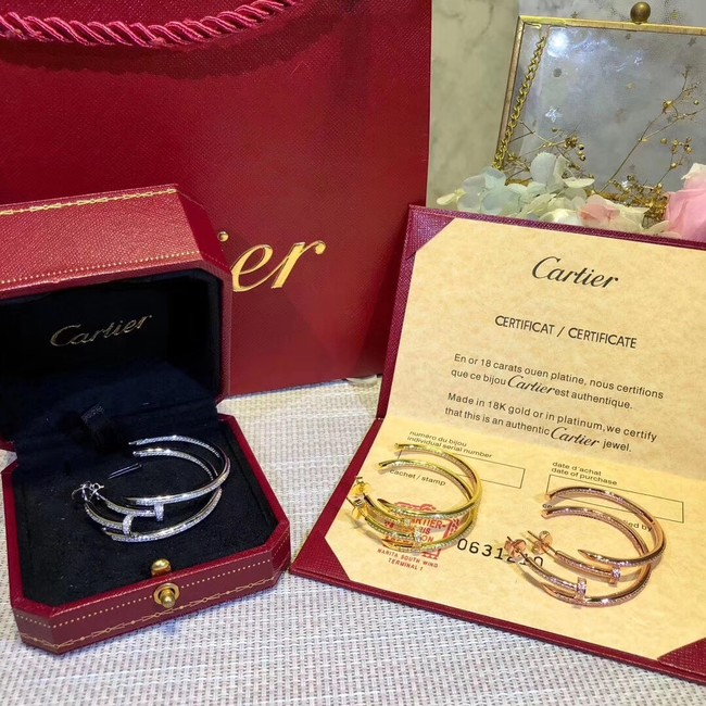 Cartier Earrings CE2313