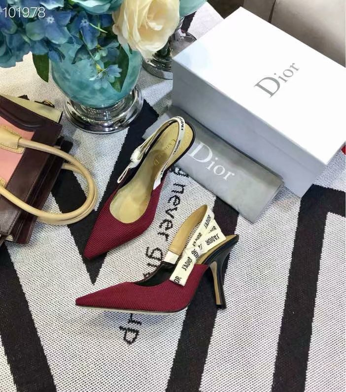 Dior Shoes Dior651H-9 9.5CM height