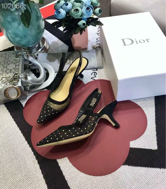 Dior Shoes Dior654H-2 6CM height