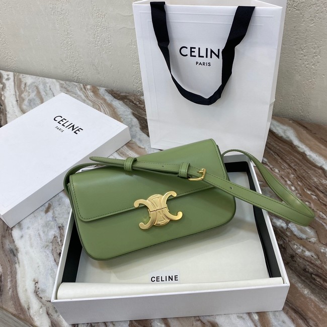Celine TRIOMPHE SHOULDER BAG IN NATURAL CALFSKIN 194143 green